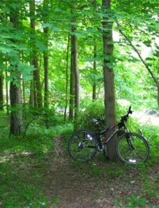 Bike riding in Mill Creek Park